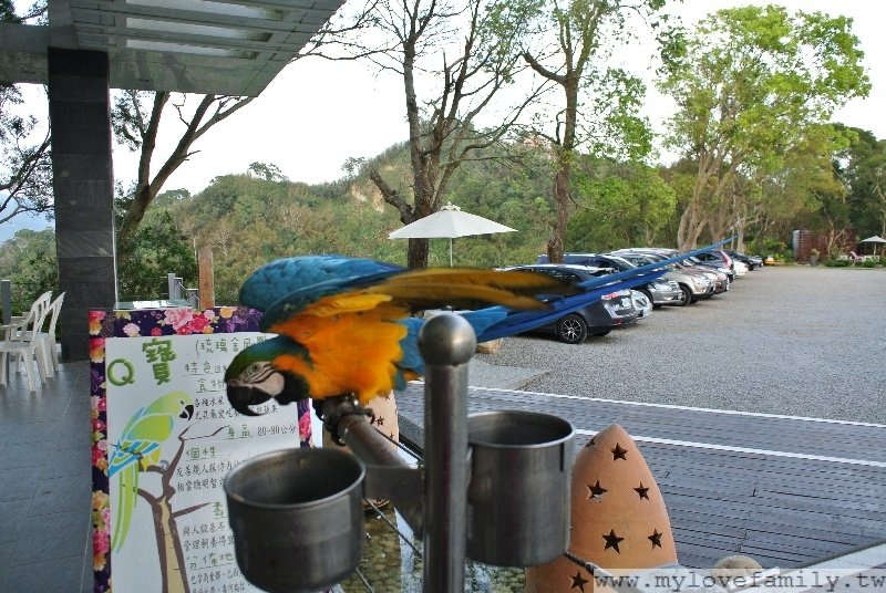 自然風情風箏餐廳