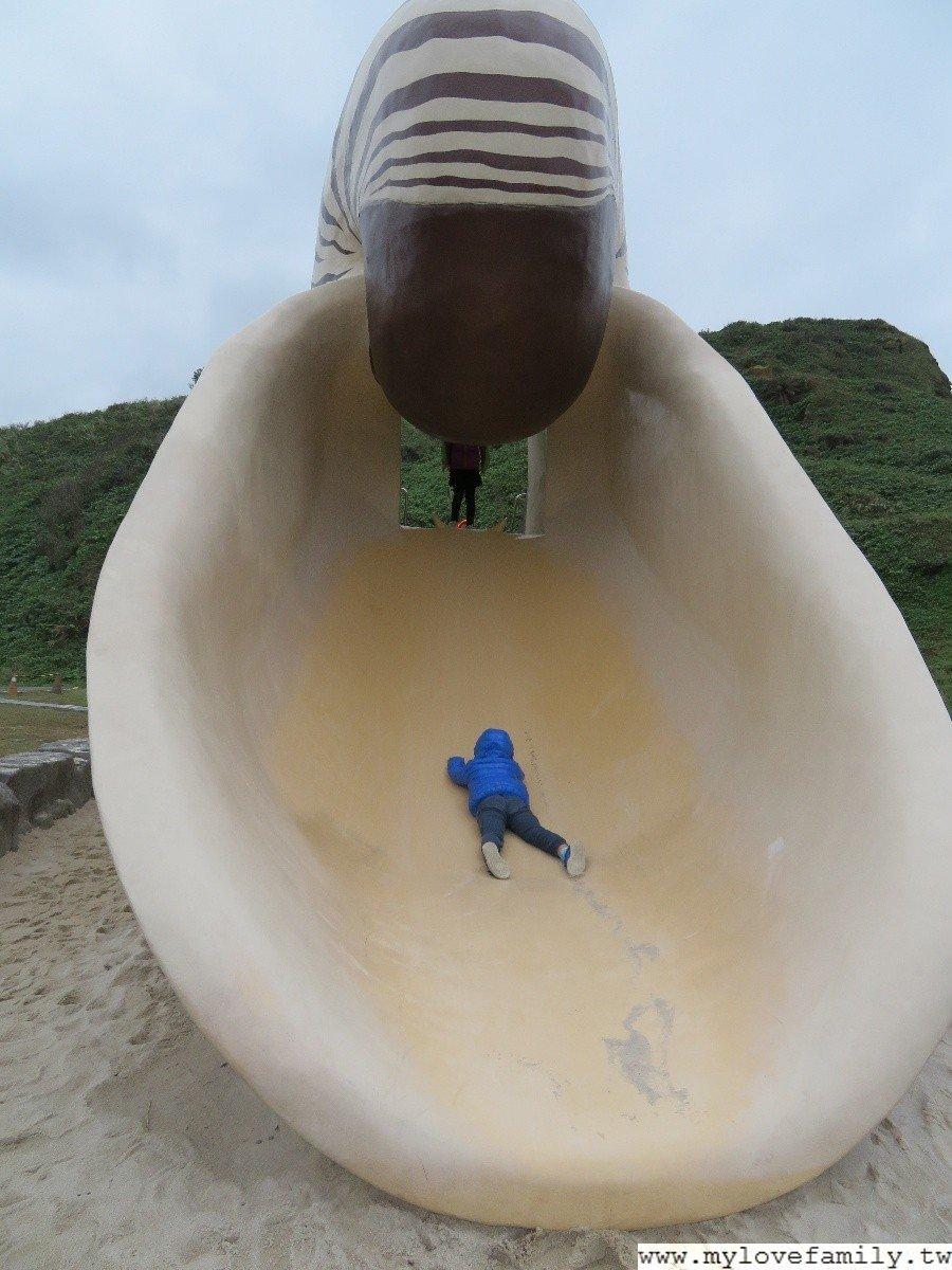 鸚鵡螺溜滑梯