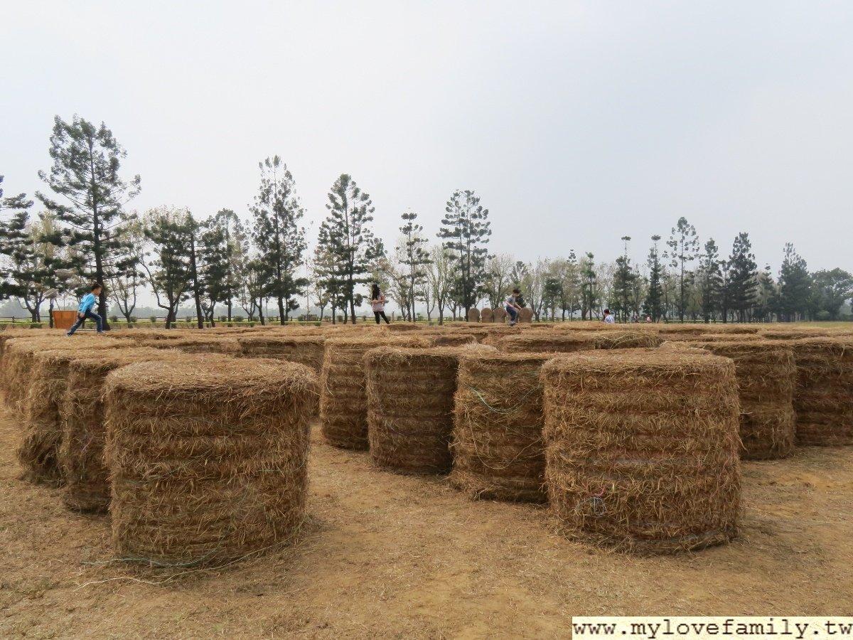 屏科大牧草迷宮
