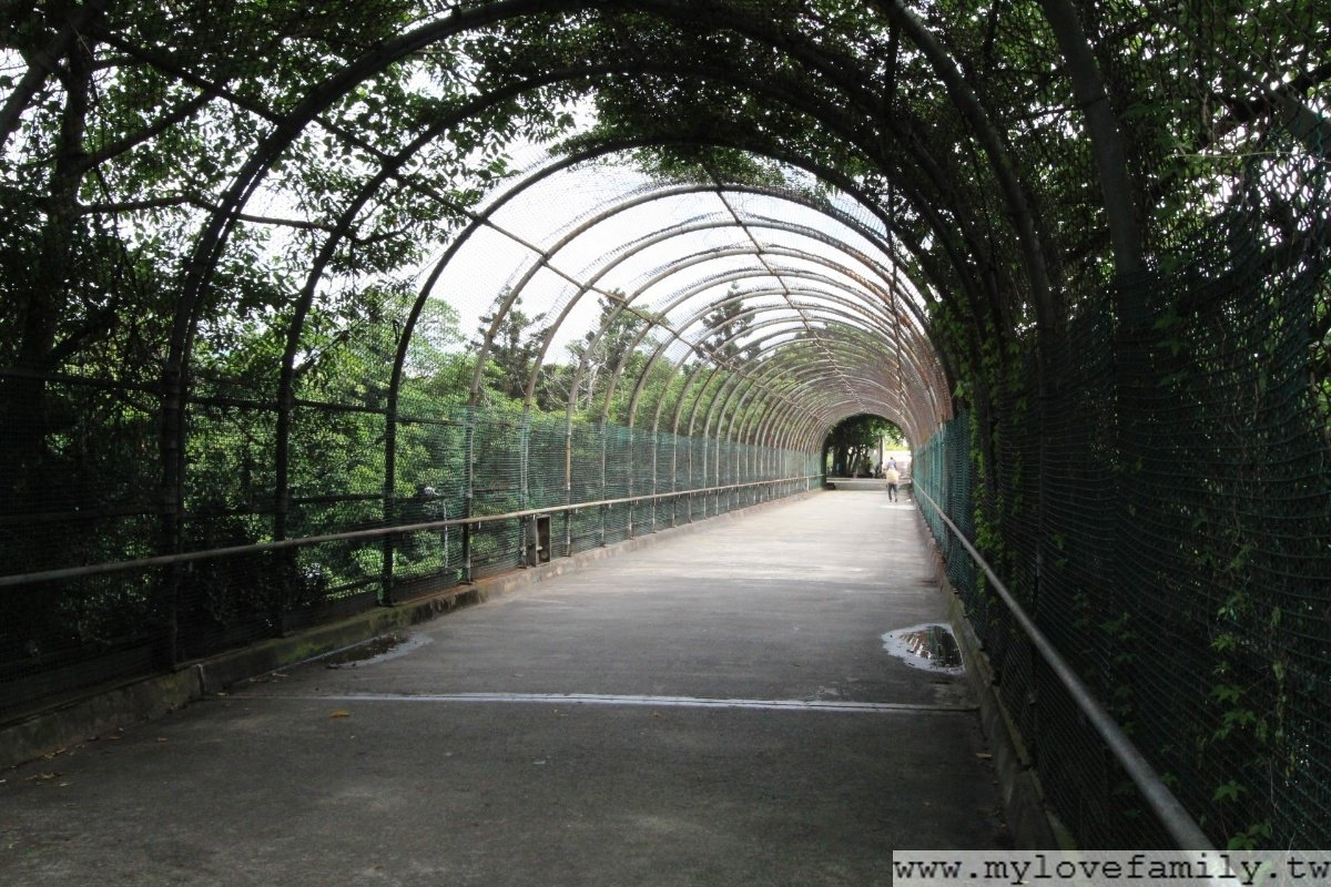 大溪埔頂公園